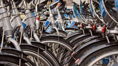 Od konce dubna jezdí cyklobusy mezi Brnem a Rakouskem