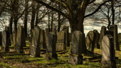 Dobrovolníci pracovali na brněnských hřbitovech. Postarali se o zpustlé hroby